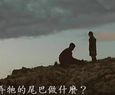 ▶ 蒙古电影《小黄狗的窝》中文字幕 第1张
