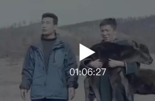 蒙古国电影«老师» 第2张