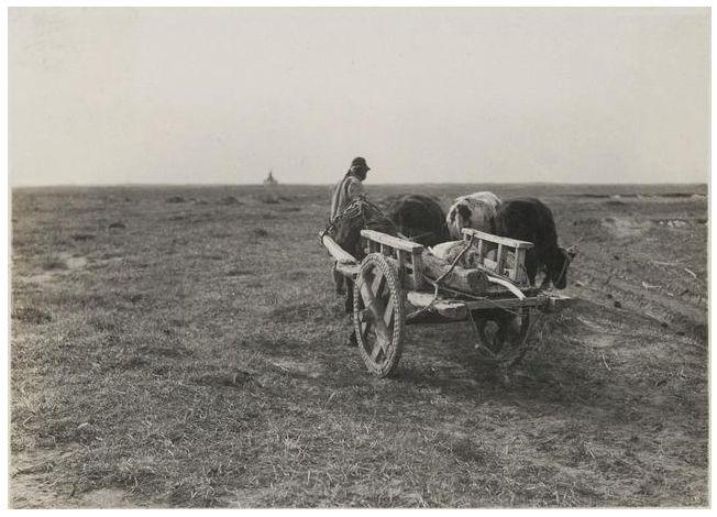 1924年的内蒙古通辽,老照片记录的是故事! 第7张