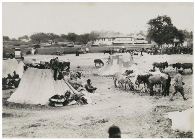 1924年的内蒙古通辽,老照片记录的是故事! 第30张