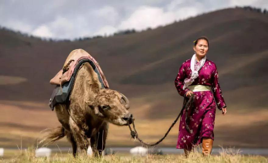 """【敬观文化】拒绝刻板印象:""""蒙古人都很能喝""""""""蒙古人不可能不喝酒"""" 第6张"""