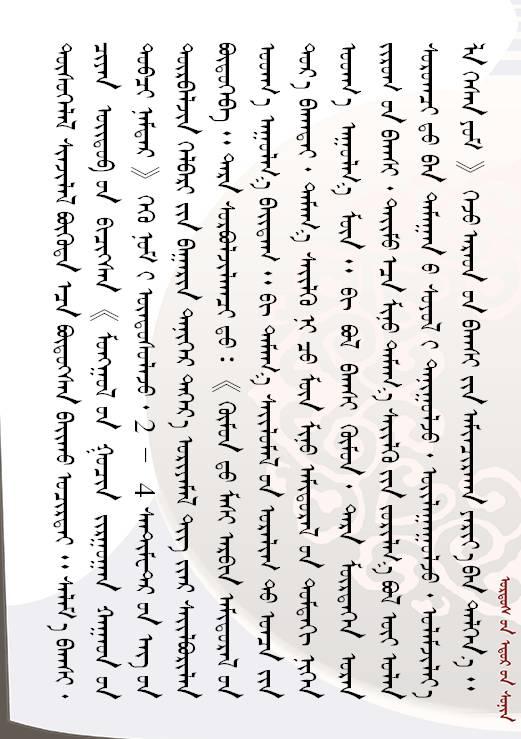 【人物】方寸艺术  青石留名 — 记斯力木老师的篆刻人生(蒙古文) 第8张