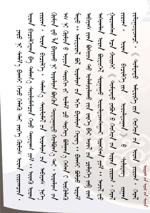 【人物】方寸艺术  青石留名 — 记斯力木老师的篆刻人生(蒙古文) 第10张