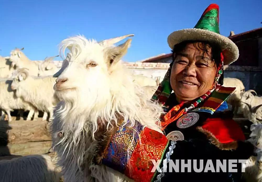 【蒙古历史】世上最全的世界各地蒙古人以及行政区域 第14张
