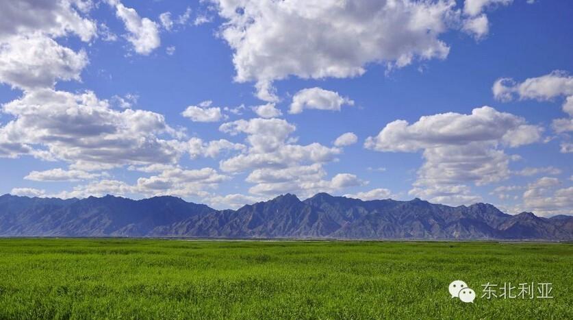 辽宁丨消失的东土默特右旗 第4张 辽宁丨消失的东土默特右旗 蒙古文化