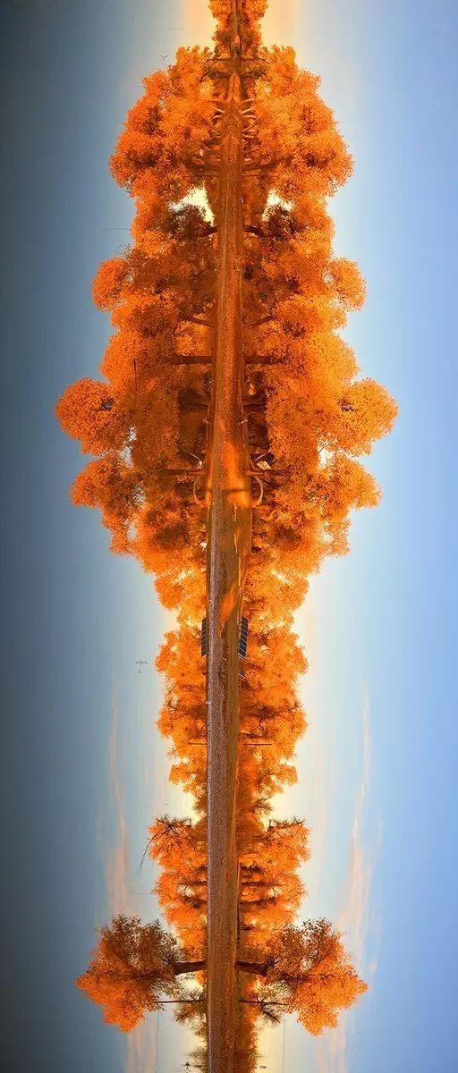 奔腾吧内蒙古!1500G素材,3万多张照片,这部历时一年拍摄的短片震撼了所有人 第37张