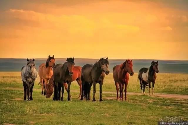 让人叹为观止的蒙古风景... 第23张