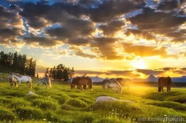 让人叹为观止的蒙古风景... 第31张