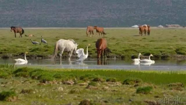让人叹为观止的蒙古风景... 第40张