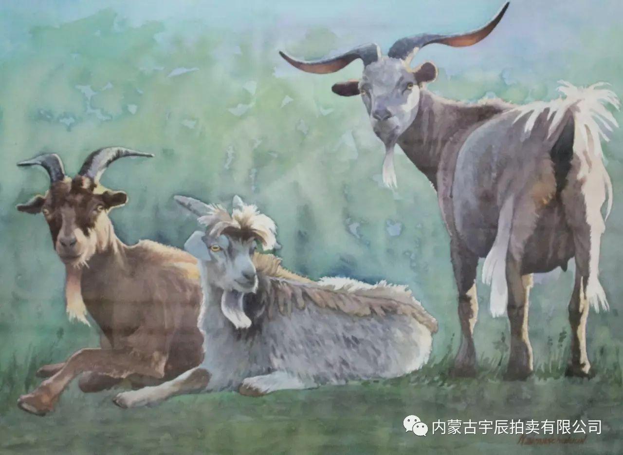 美丽盛开的原野——蒙古国作品赏析(二) 第11张