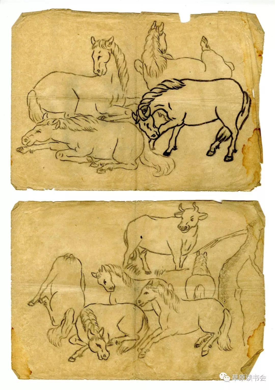博彦和什克与他的蒙古族图案艺术 第18张 博彦和什克与他的蒙古族图案艺术 蒙古图案