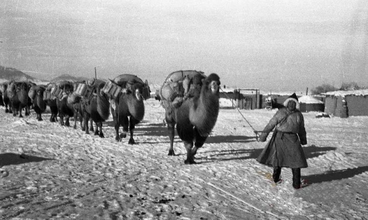 50年代蒙古国人民的文化生活老照片,他们的生活原来是这样的 第1张 50年代蒙古国人民的文化生活老照片,他们的生活原来是这样的 蒙古文化