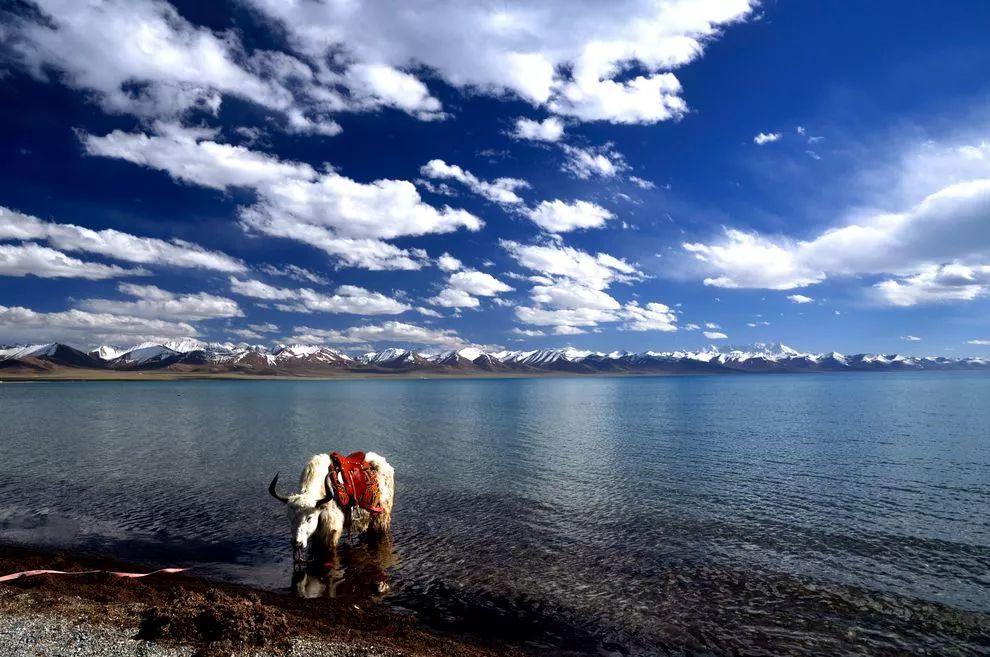 蒙古痕迹 第8张 蒙古痕迹 蒙古文化