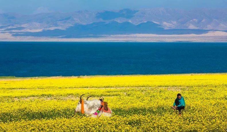 蒙古痕迹 第10张 蒙古痕迹 蒙古文化