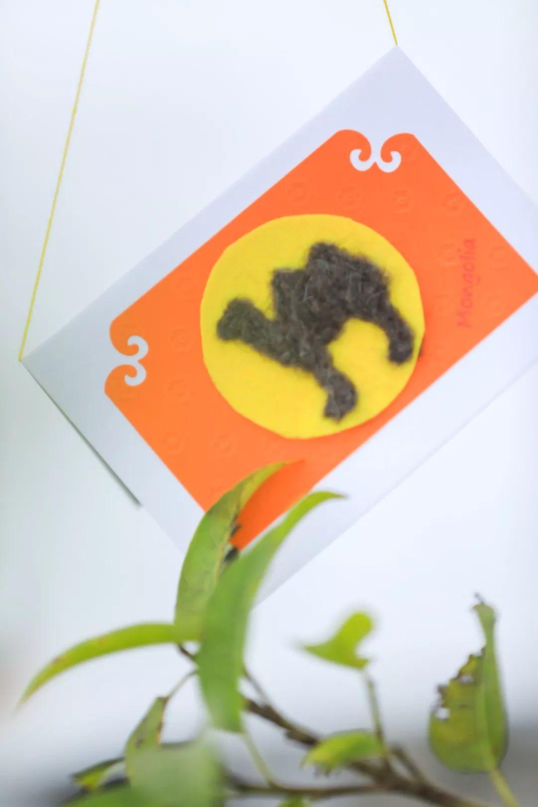 巴特尔佐力格&诺敏| 来自蒙古艺术家的一份礼物! 第11张