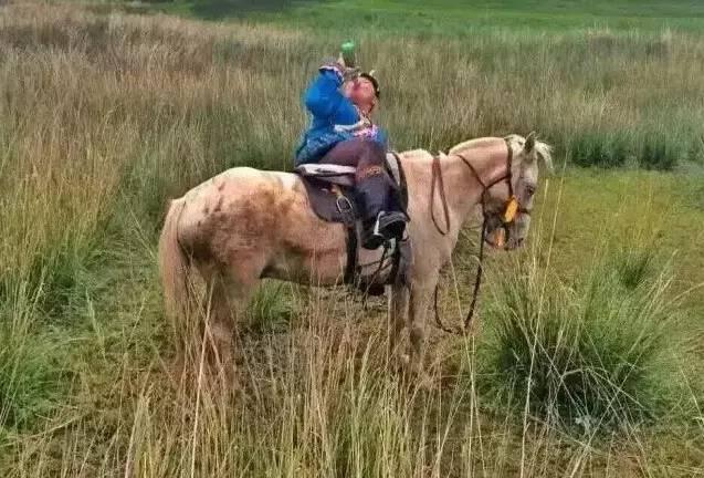 蒙古人《醉骑》?非常震撼的视频! 第7张