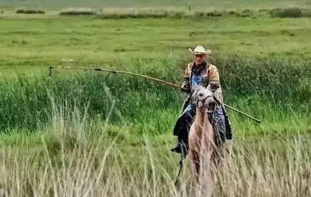 蒙古人《醉骑》?非常震撼的视频! 第8张 蒙古人《醉骑》?非常震撼的视频! 蒙古文化