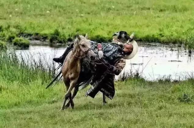 蒙古人《醉骑》?非常震撼的视频! 第9张 蒙古人《醉骑》?非常震撼的视频! 蒙古文化