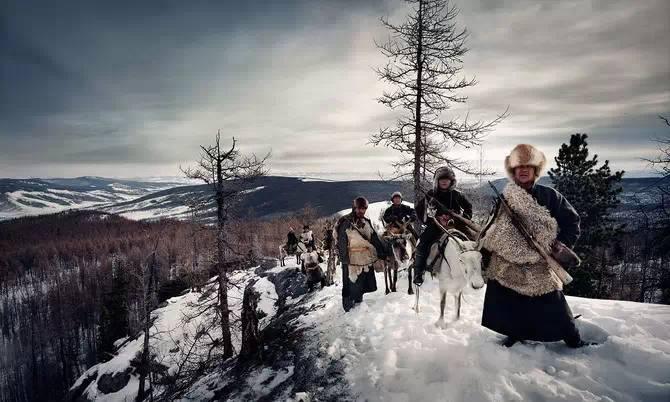 蒙古猎鹰一出 草原狼都悲剧 ,很震撼的视频! 第3张