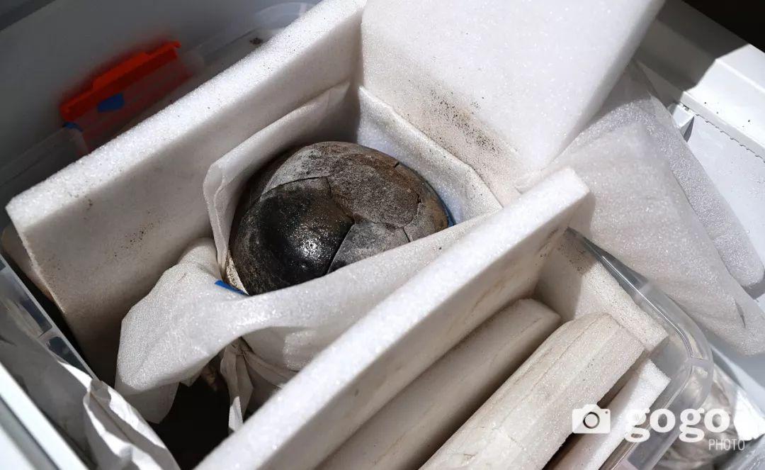 蒙古出土了八百年前罐藏的奶皮和酥油,堪称世界考古新发现 第11张