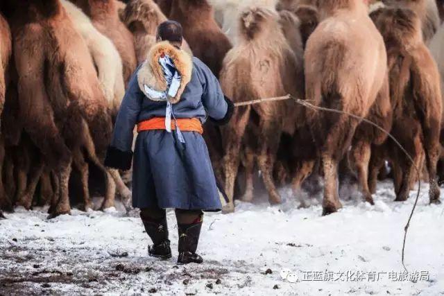 冰雪察哈尔丨察哈尔服饰的魅力 第10张 冰雪察哈尔丨察哈尔服饰的魅力 蒙古服饰
