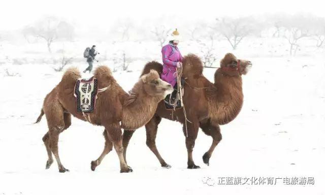 冰雪察哈尔丨察哈尔服饰的魅力 第24张 冰雪察哈尔丨察哈尔服饰的魅力 蒙古服饰