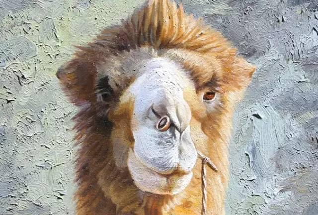 艺术家恩和:与骆驼的不解情缘 第3张