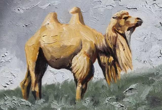 艺术家恩和:与骆驼的不解情缘 第5张