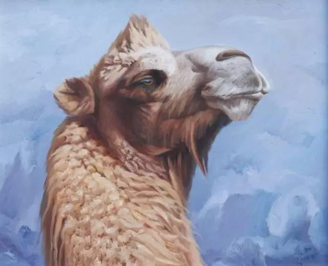 艺术家恩和:与骆驼的不解情缘 第7张