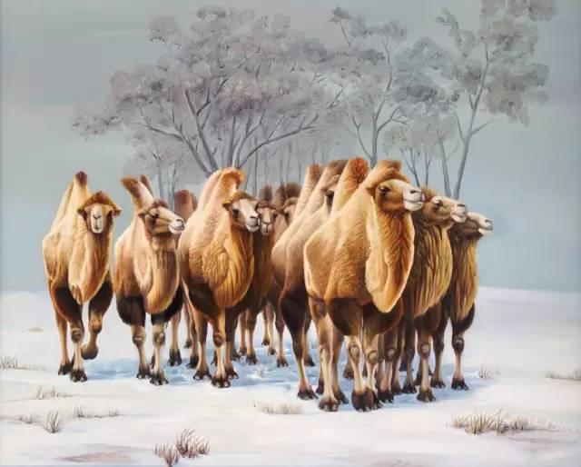 艺术家恩和:与骆驼的不解情缘 第6张