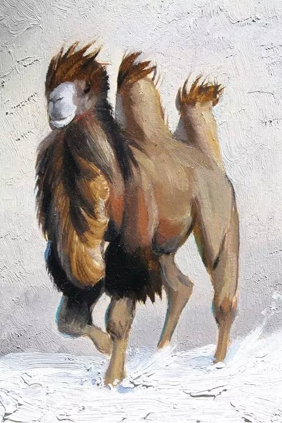 艺术家恩和:与骆驼的不解情缘 第9张