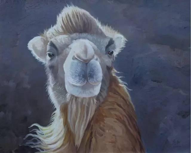 艺术家恩和:与骆驼的不解情缘 第8张