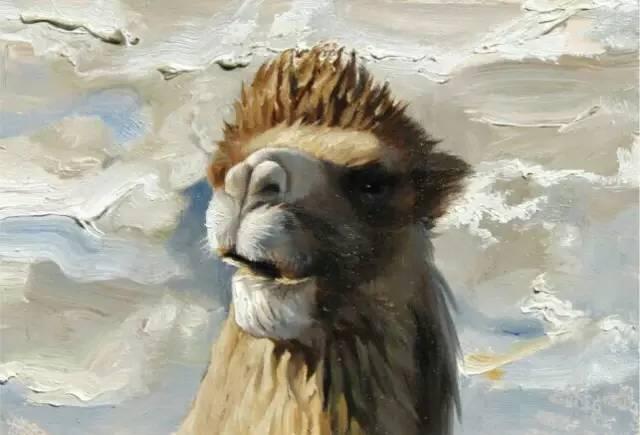 艺术家恩和:与骆驼的不解情缘 第13张