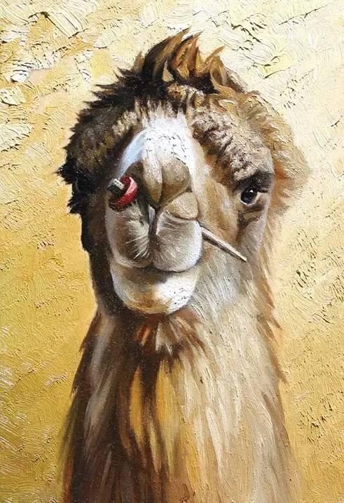 艺术家恩和:与骆驼的不解情缘 第17张