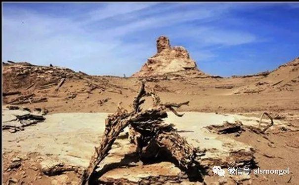 罗布泊地区蒙古后裔略记 第8张