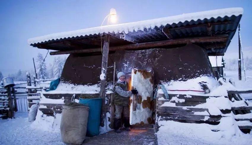 世界上最寒冷的村子,住着一群蒙古人后裔 第6张