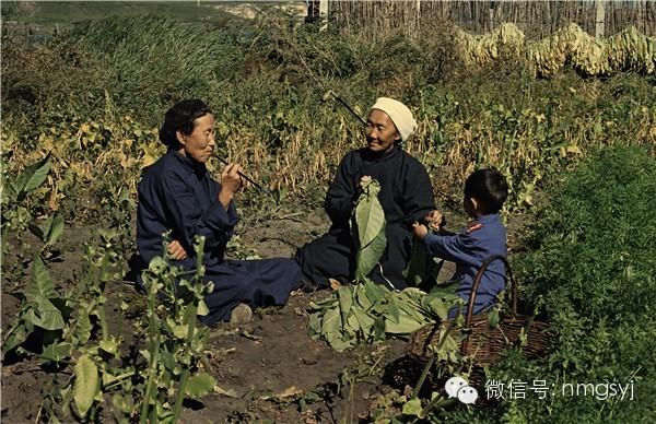 内蒙古摄影家—宝音摄影作品  情系草原 第1张