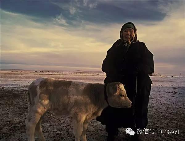 内蒙古摄影家—宝音摄影作品  情系草原 第10张