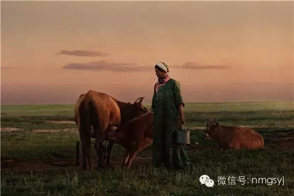 内蒙古摄影家—宝音摄影作品  情系草原 第9张