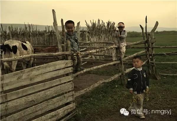 内蒙古摄影家—宝音摄影作品  情系草原 第19张