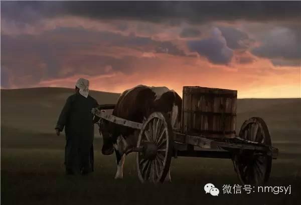 内蒙古摄影家—宝音摄影作品  情系草原 第23张