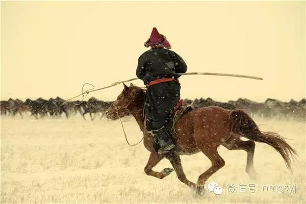 内蒙古摄影家—宝音摄影作品  情系草原 第26张