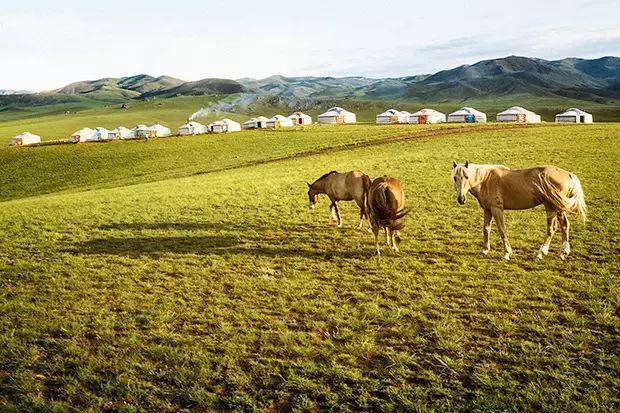 摄影纪实| 传统蒙古人的日常 第11张