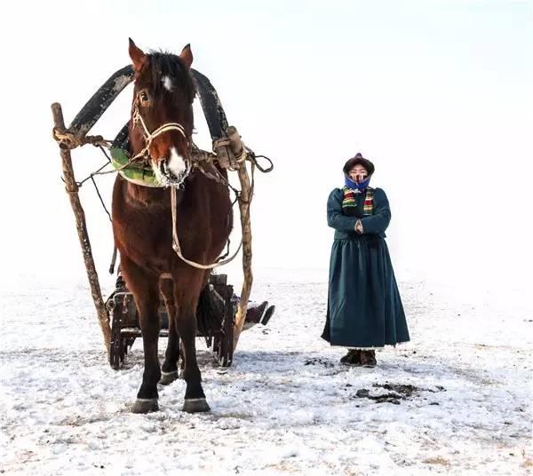 【阿努美图】摄影师宝音:内蒙古大草原冬季采风作品欣赏 第3张