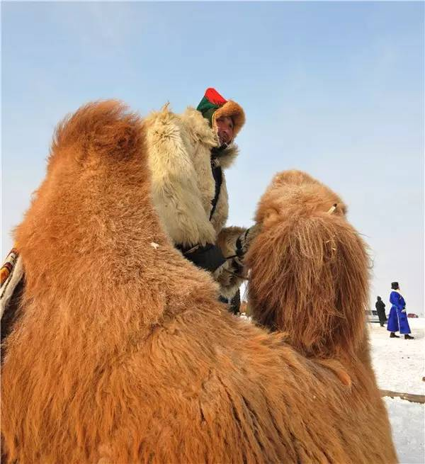 【阿努美图】摄影师宝音:内蒙古大草原冬季采风作品欣赏 第8张