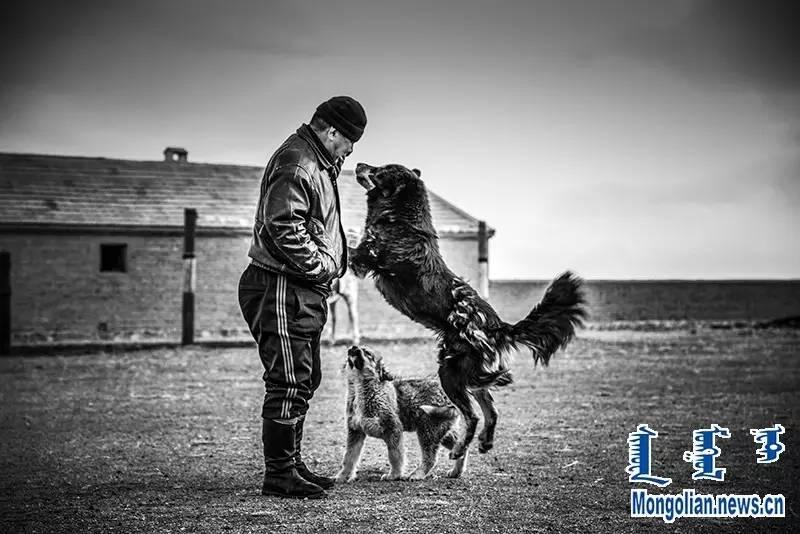 【音频·图片】蒙古族青年摄影家宝日玛个人摄影展 第6张