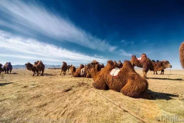 一组蒙古国高清摄影美图,让人向往的一片圣地 第2张