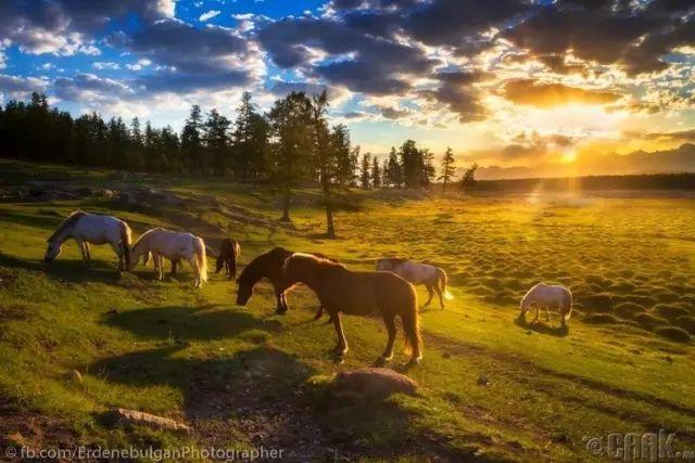 一组蒙古国高清摄影美图,让人向往的一片圣地 第20张