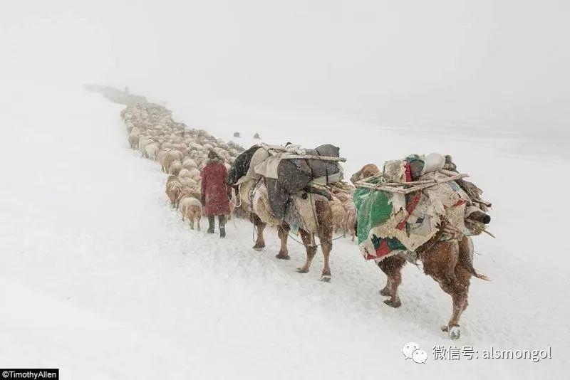 【摄影】蒙古冬季美景 第1张