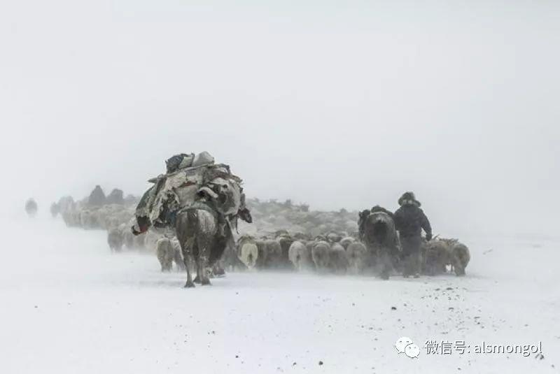 【摄影】蒙古冬季美景 第2张 【摄影】蒙古冬季美景 蒙古文化